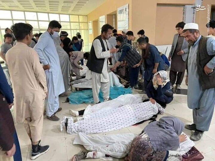 انفجار جلوی مدرسه دخترانه در کابل و جنازههای افتاده بر زمین / فیلم