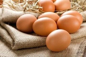 فواید باورنکردنی تخم مرغ که از آن بی اطلاعید