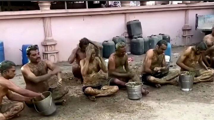 حمام با فضولات گاو برای پیشگری از ابتلا به کرونا! / فیلم