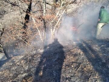 مهار آتش سوزی سیاه کوه دهلران