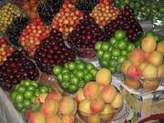 قیمت گوجه سبز، زردآلو و توت فرنگی در بازار
