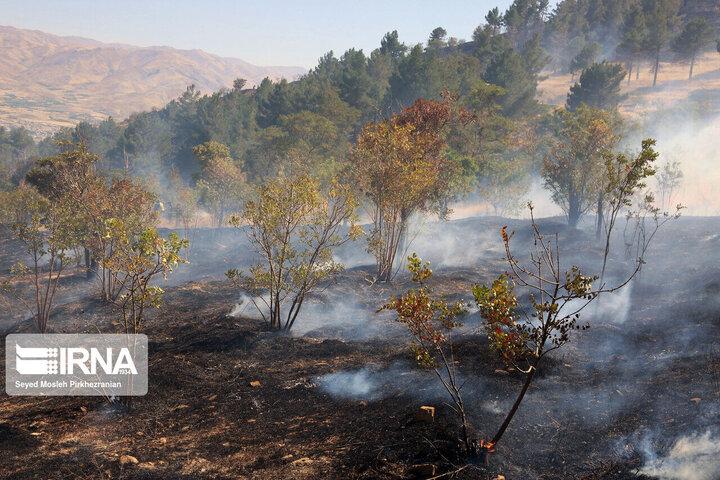مهار کامل آتش سوزی در ارتفاعات گچساران