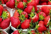 پیشگیری از سرطان و سکته مغزی با مصرف این میوه
