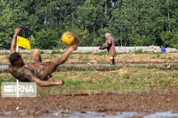 گزارش تصویری از فوتچل مسابقات فوتبال داخل شالیزار