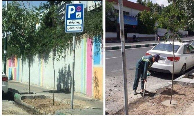 اقدام جالب شهرداری تهران در محل کشف پیکر بابک «خرمدین»