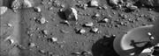 نشانه واضح از وجود حیات در مریخ یافت شد