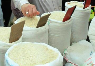 قیمت برنج ایرانی در شمال کشور اعلام شد / اتمام ذخایر برنج تا سه ماه آینده صحت دارد؟