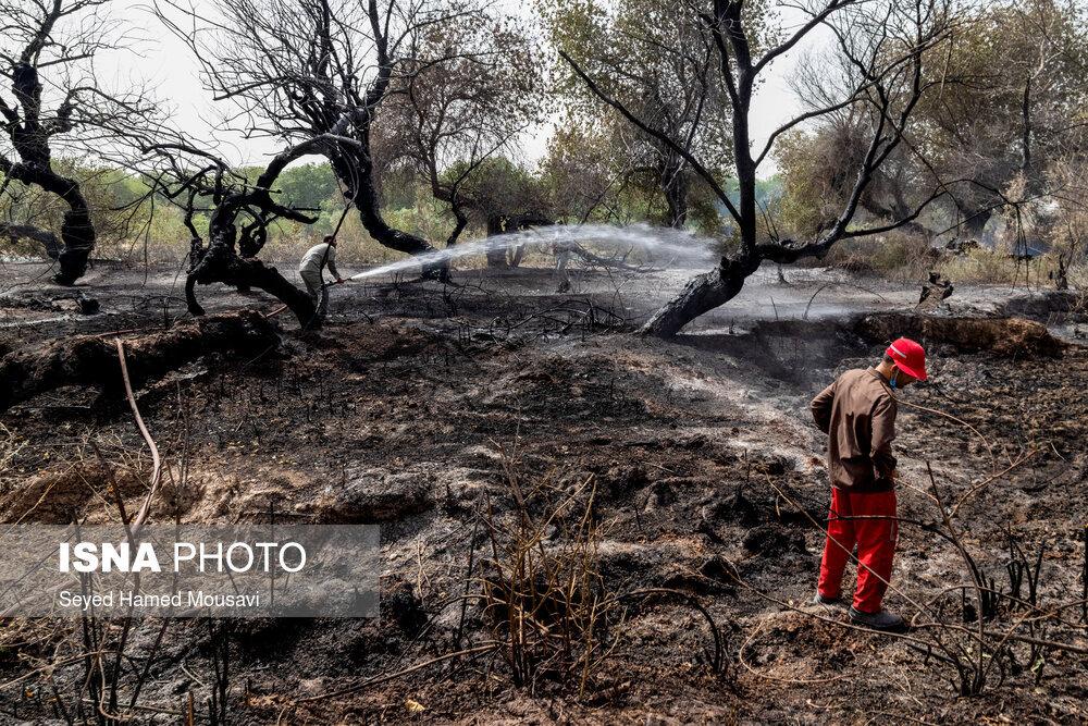 پایان اطفای حریق در جنگل کرخه در شوش / تصاویر