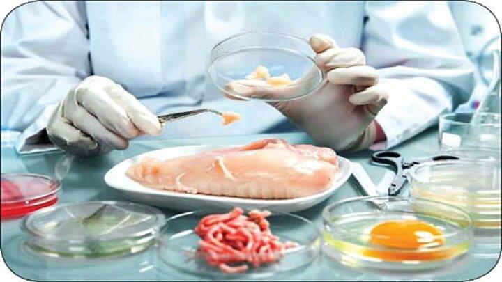 از کجا بفهمیم مواد غذایی فاسد شده است؟ + علائم