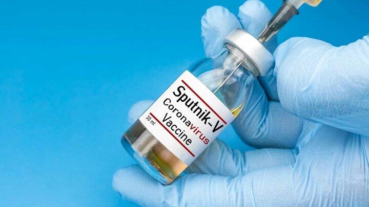 واکسنی که در برابر کرونای برزیلی بسیار موثر است