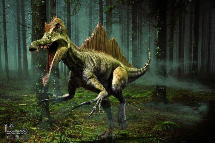حقایق جالب درباره دایناسورها که با شنیدن آن شگفتزده میشوید