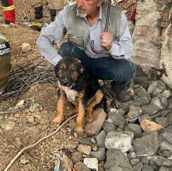نجات توله سگ از چاه عمیق در تهران / عکس
