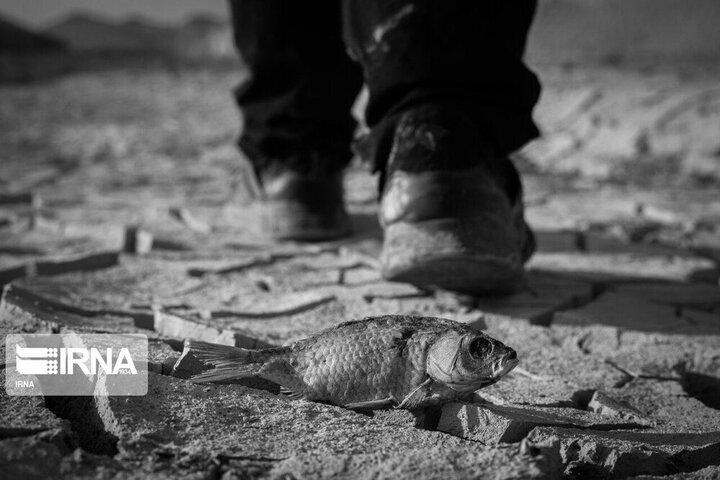 پیشبینی خشکسالی در ایران طی ۱۶ سال آینده