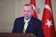 اردوغان، ترکیه با حمایت ملتش با جنایتکار مبارزه میکند