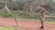مارگیری عجیب به شیوه یک سرباز / فیلم