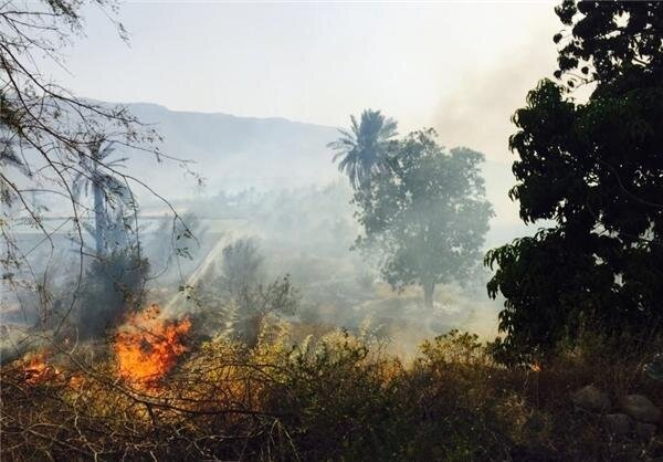 آتش سوزی در باغ فرزانه شیراز