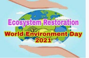 ۵ ژوئن، روز جهانی محیط زیست