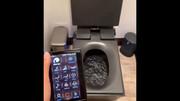 تولید توالت فرنگی دیجیتالی / فیلم