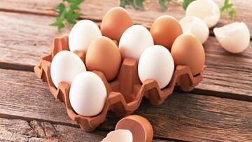 تخم مرغ گران نشده است/ پیشبینی التهاب بازار مرغ در ماههای آینده