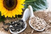 خواص باورنکردنی تخمه آفتابگردان برای سلامتی؛ از کاهش وزن تا کاهش خطر بیماری قلبی