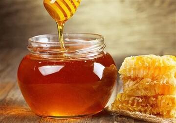 خواص شگفتانگیز عسل و روغن زیتون برای سلامتی؛ از تضمین سلامت قلب تا ترمیمکننده زخم و سوختگی