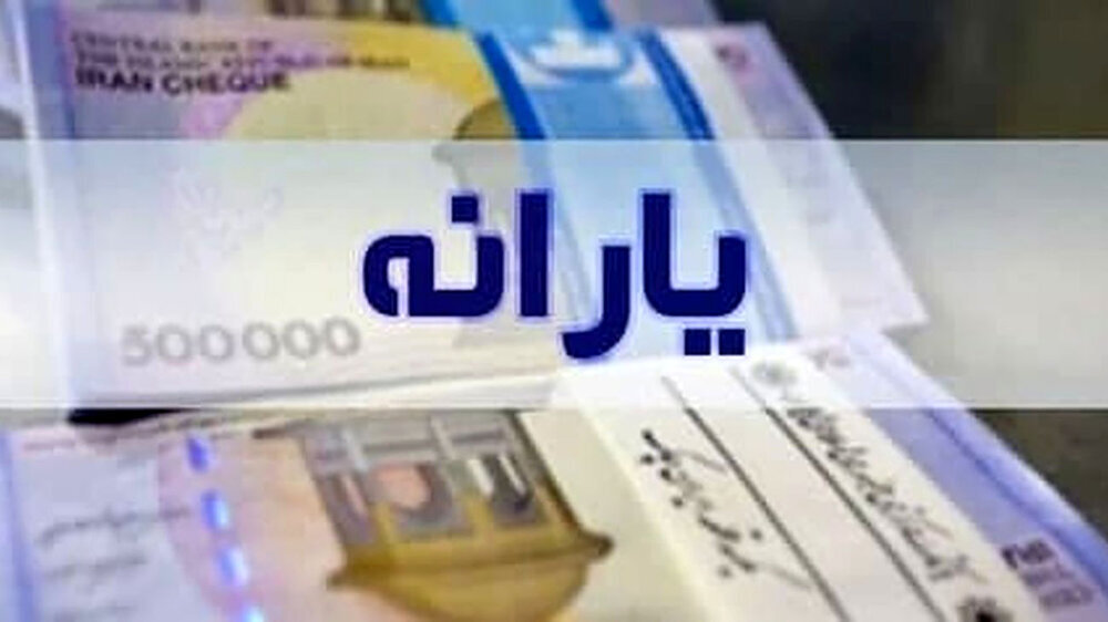 واکنش رییس سازمان هدفمندی یارانهها به وعدهها برای افزایش مبلغ یارانه نقدی