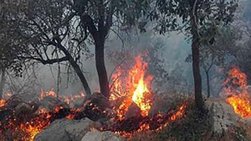فیلم ناراحتکننده از آتشسوزی جنگلهای زاگرس