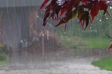 گزارش آب و هوا ۲۶ خرداد ۱۴۰۰ / هشدار نسب به وزش باد شدید و مواج شدن دریا