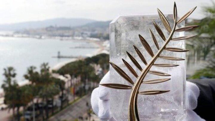 فیلم کوتاه «ارتودنسی» نامزد نخل طلای جشنواره کن شد