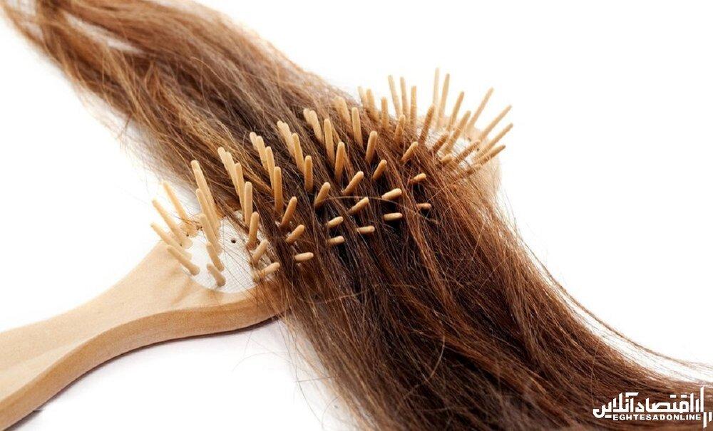 سلامت مو رشد مو
