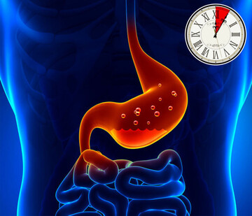 چقدر زمان میبرد تا هر ماده غذایی در بدن هضم شود؟