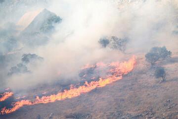 تصاویری از آتشسوزی در جنگلهای کوه حاتم در  زاگرس / فیلم