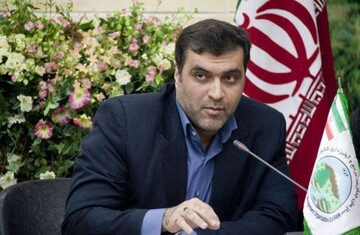 توضیح مشاور وزیر کشور درباره یک ادعا درمورد انتخابات  / عکس