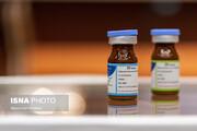 واکسن «کووپارس» به بیمارانی دیابتی و فشارخونی تزریق شد / مجوز مصرف داوطلبانه واکسن کی صادر میشود؟