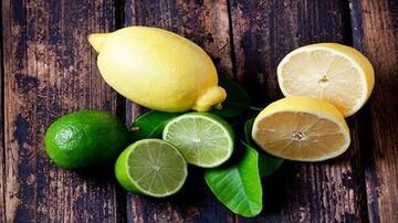 خواص شگفتانگیز لیمو ترش برای سلامتی؛ از تقویت سیستم ایمنی تا مقابله با سرطان