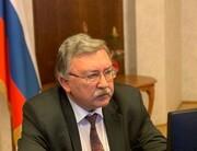 اولیانوف: توقف مذاکرات وین یک هفته طول میکشد
