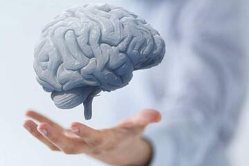 کشف جدید محققان درباره تاثیر کرونا بروی مغز