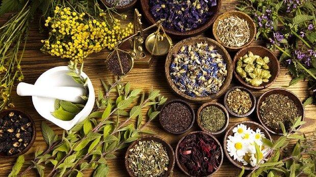 رفع سوء هاضمه با مصرف چند نوع گیاه دارویی