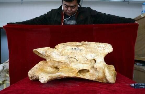 آثار باستانی | آثار تاریخی، کشور چین،
