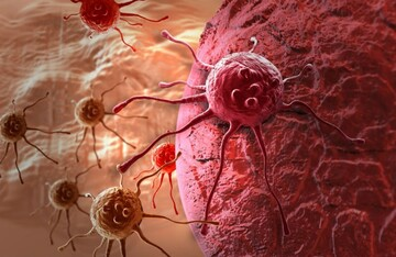 یافتههای جدید و خطرناک درباره سلولهای سرطانی