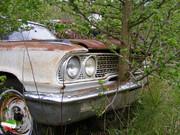 تصمیم شجاعانه مجلس برای ارزان کردن قطعی خودرو