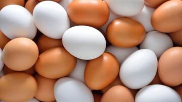 مصرف تخم مرغ برای چه کسانی مفید است؟