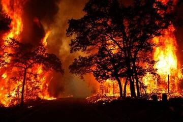 تلاش برای مهار آتش در ارتفاعات گچساران / فیلم