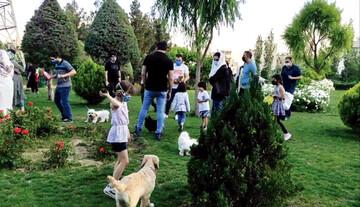جزییات طرح ممنوعیت حضور حیوانات خانگی در فضای بازی بوستانها در تهران