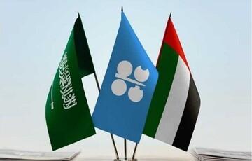 امارات، خبر توافق نفتیاش با عربستان را تکذیب کرد