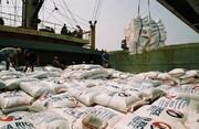 کمبود و گرانی برنج در راه است؟