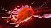 تصاویری جالب از بالا رفتن ماهی از دیوار راست! / فیلم
