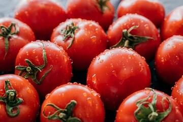 مضرات مصرف بیش از حد گوجه فرنگی؛ از درد مفصل تا رفلاکس اسید معده