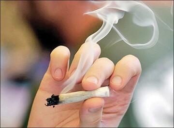 مصرف مخدر «گل» از شیشه سبقت گرفت / دسترسی به موادمخدر به کمتر از ۷ دقیقه رسید!