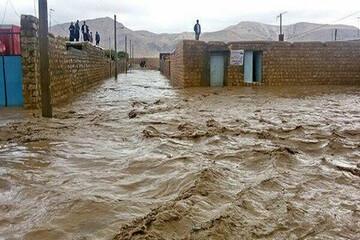 لحظه دلهرهآور ورود سیلاب به روستایی در کرمان / فیلم